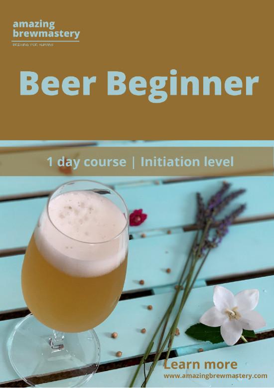 https://www.amazingbrewmastery.com/wp-content/uploads/2020/06/Beer-Beginner-1-rs.jpg