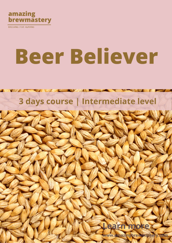 https://www.amazingbrewmastery.com/wp-content/uploads/2020/06/Beer-Believer-1-rs.jpg